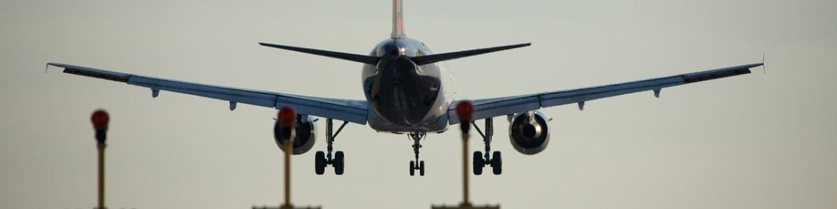 Atterraggio di emergenza perché un cane fa i suoi bisogni in aereo